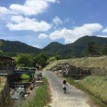 【奈良・子連れ旅行記】長女とドライブデート!(當麻寺・二上山登山・ホタル観賞)