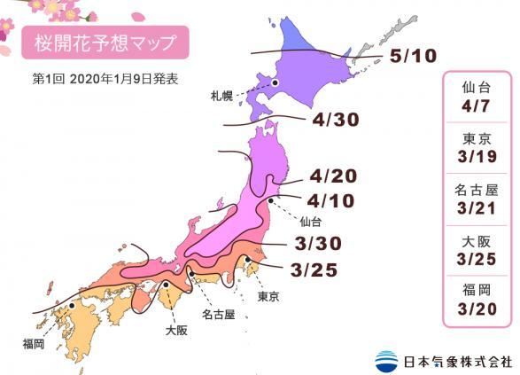 桜開花予報2020!名古屋の開花は3月21日、満開は3月30日頃【愛知県の名所を紹介】