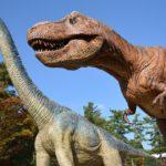岡崎市東公園動物園の駐車場料金や混雑状況は?全て無料って本当?