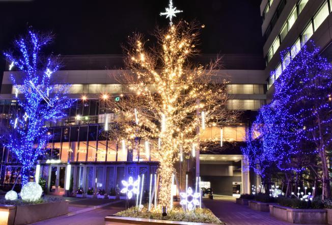 名古屋駅ルーセントタワーのクリスマスイルミネーションの写真を紹介!開催期間や点灯時間は