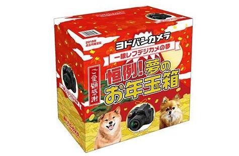 ヨドバシカメラ福袋2022(ヨドバシ夢のお年玉箱)